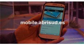Primera web móvil del sector de la piscina