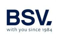 Logo BSV ELECTRONIC